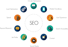 Seo Expert in Udaipur